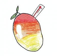 Mangofeber DIPA (Brewski)